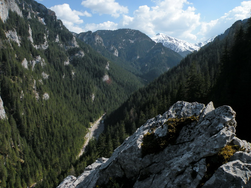 Przeglądasz zdjęcia z artykułu: Dolina Kościeliska