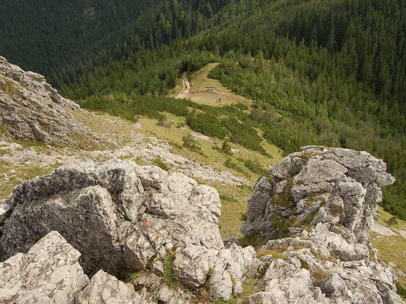 Przeglądasz zdjęcia z artykułu: Dolina Strążyska