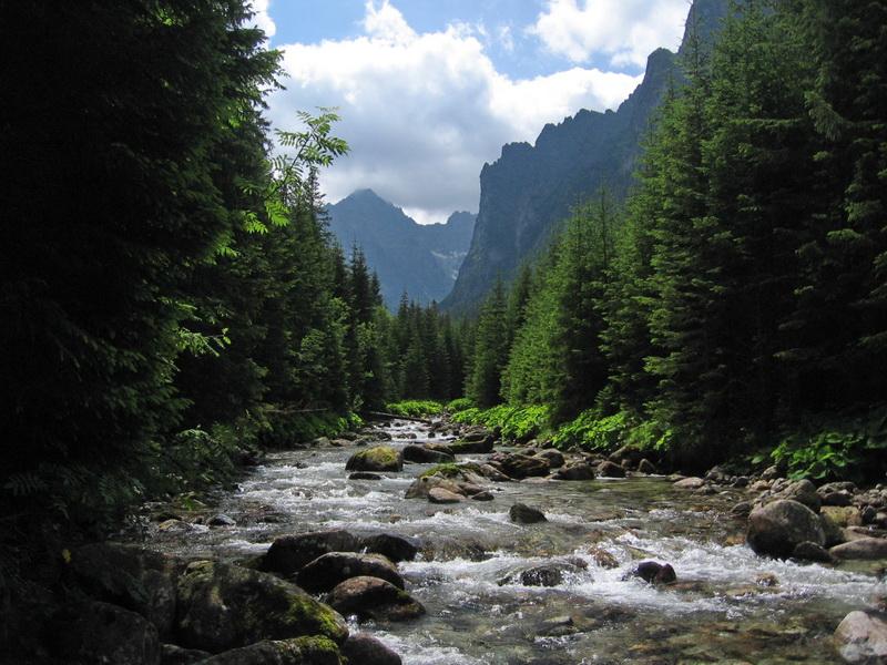 Przeglądasz zdjęcia z artykułu: Dolina Białej Wody